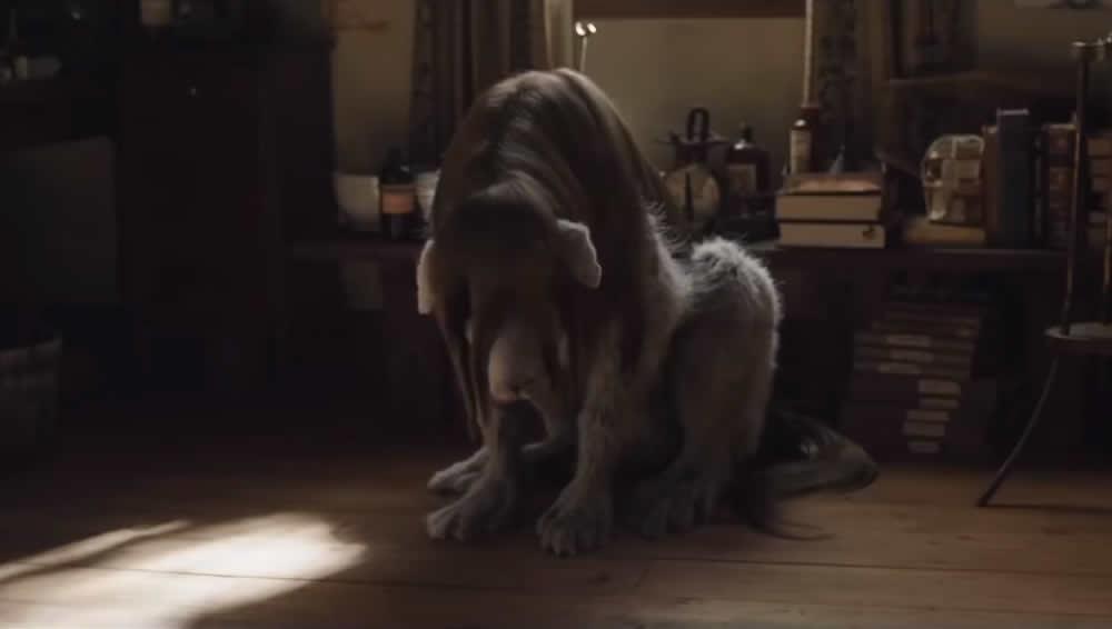 Netflix divulga o trailer de lançamento do filme do Fullmetal Alchemist!