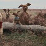 Divulgado um novo trailer de Christopher Robin, filme live-action do Ursinho Pooh!